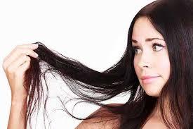 Hair Fall Control Agent