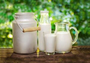 Milk as a Traditional Muscle Builder